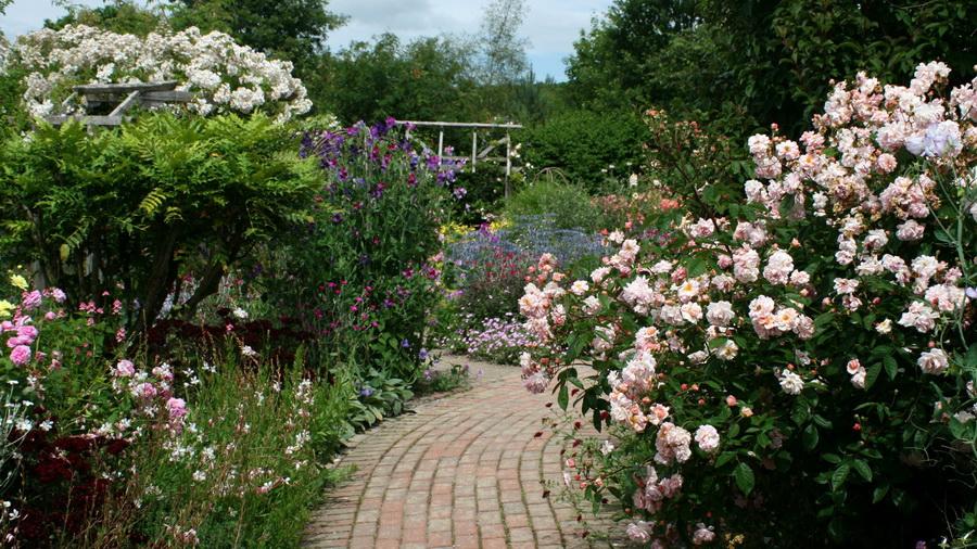 เลือกสวนให้เหมาะกับไลฟ์สไตล์ - สวนสไตล์ชนบทอังกฤษ
